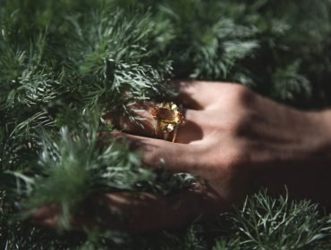 asvof-2016-08-17-bliss-lau-ceremony-rings-nature-photos-keziban-barry-diane-pernet-1674695724
