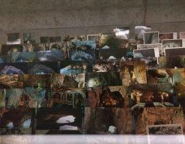 Thomas Demand: Processo Grottesco