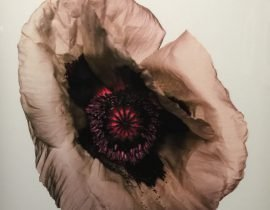Irving Penn at le Grand Palais