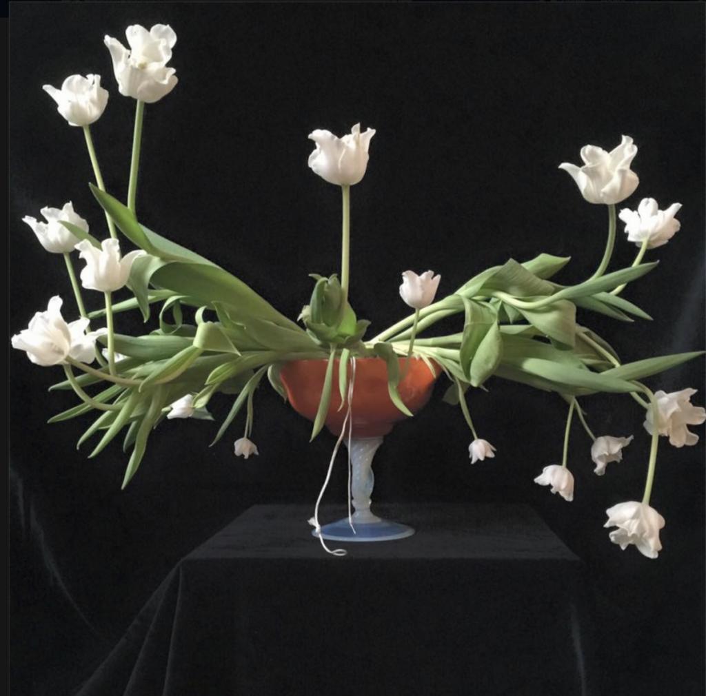 tulip Master